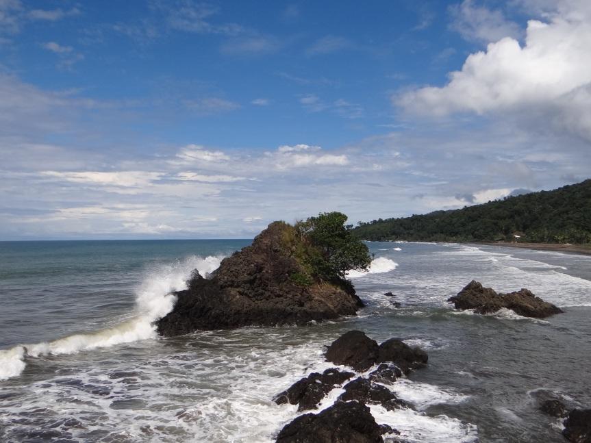 Fascinados por el poderoso oceanopacífico