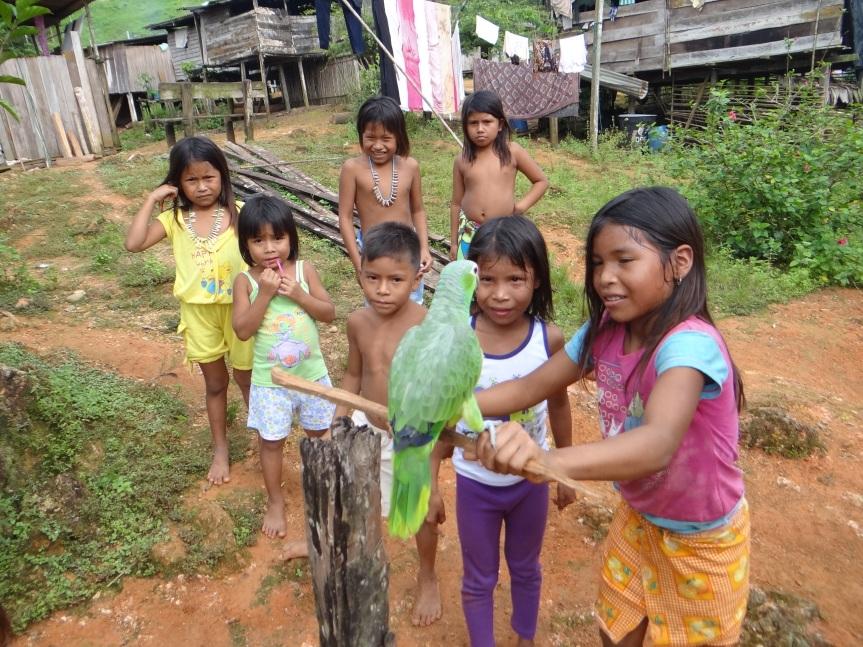 Los Embera en una dualidad cultural en el medio de laselva